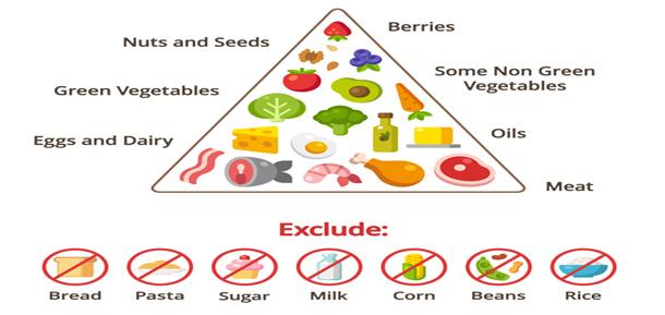 tipos de dietas alimentares